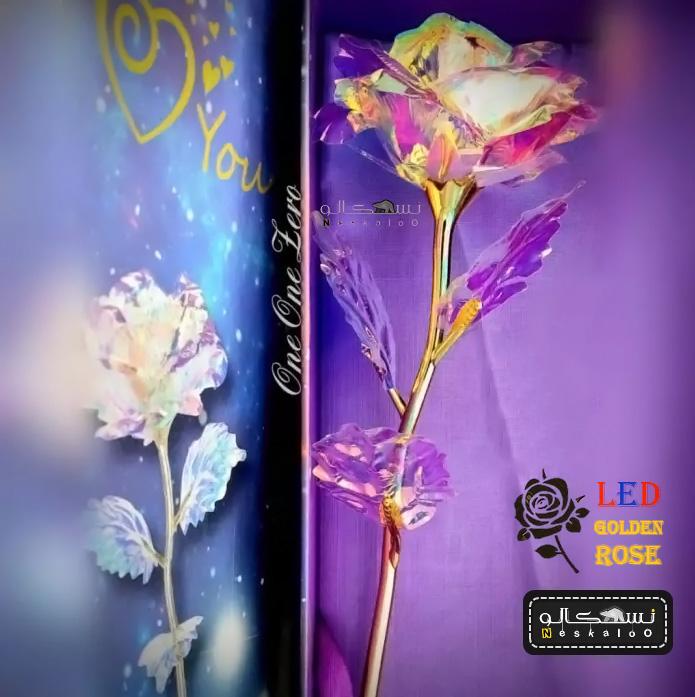 گل رز ال ای دی