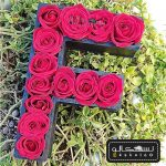گل رز حروف انگلیسی-۳