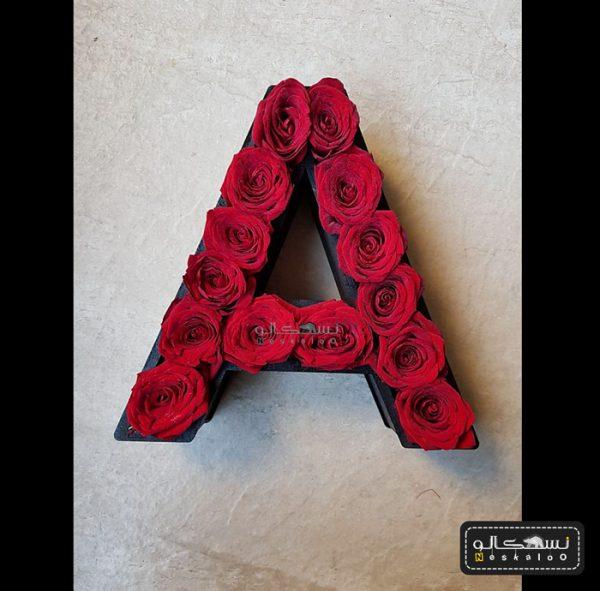گل رز حروف انگلیسی-۴