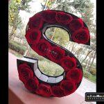 گل رز حروف انگلیسی-۵