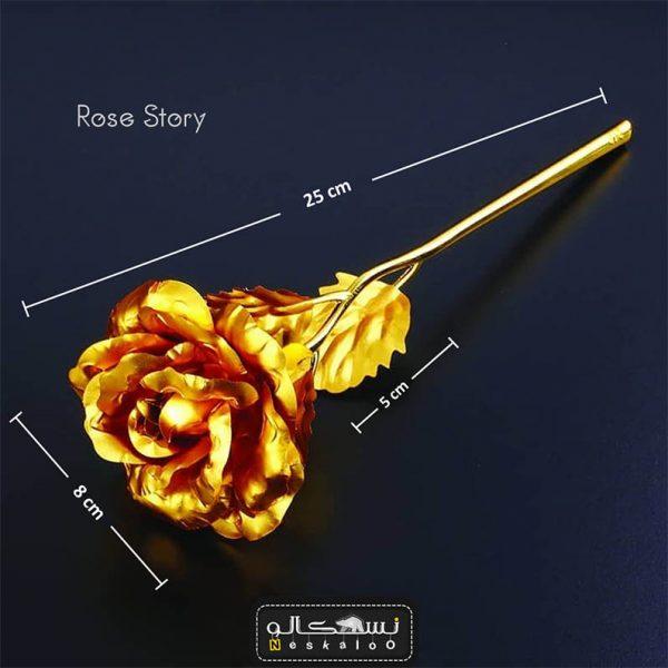 گل رز هلندی با تخفیف
