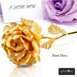 گل رز طلایی rose story